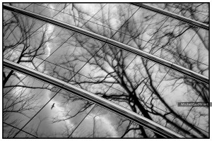 Blustery Day Reflection :: Black and white urban photography - Artwork © Michel Godts
