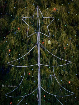 The Christmas Tree Wireframe :: Christmas season photography - Artwork © Michel Godts
