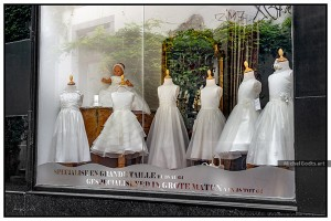 Vine Reflection In Bridal Window :: Urban street photography - Artwork © Michel Godts