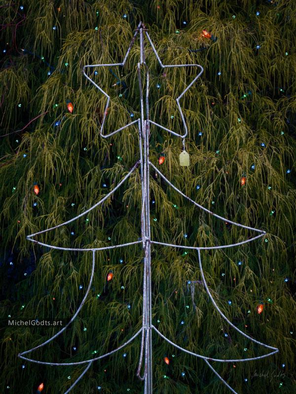 The Christmas Tree Wireframe :: Christmas season photography - Artwork © Michel Godts