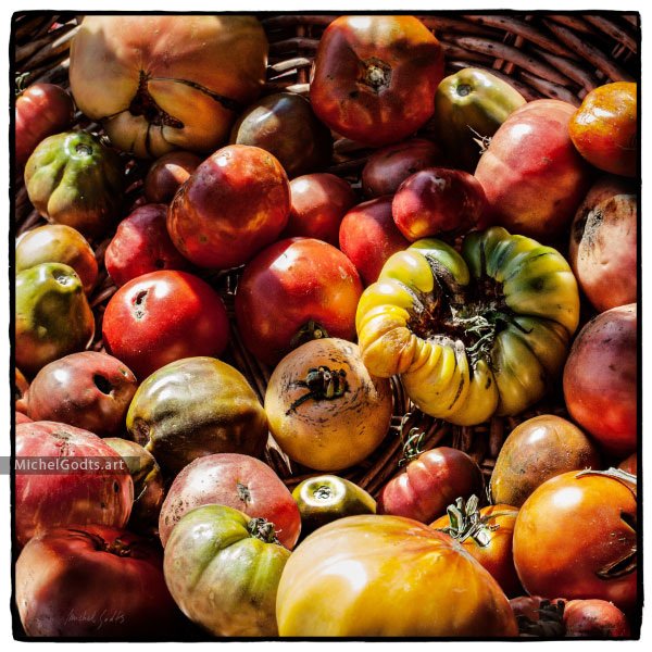 Heirloom Tomatoes Medley :: Fruits & vegetables organic photography - Artwork © Michel Godts