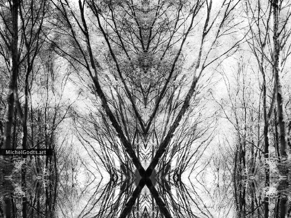 Woodland Arising :: Black and white experimental abstract photography - Artwork © Michel Godts